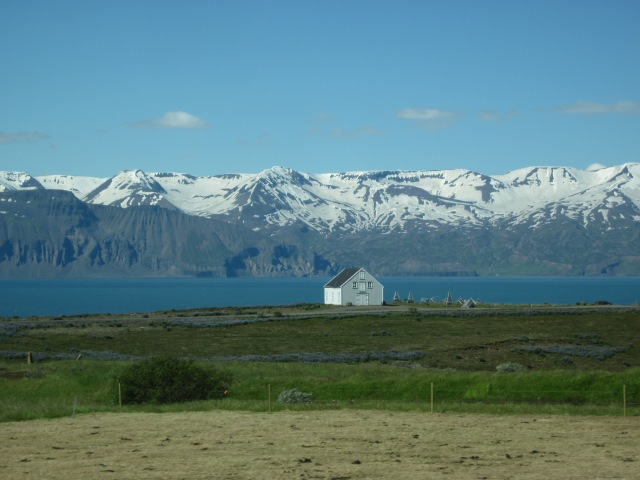 near Husavik (photo by A. Chapman)