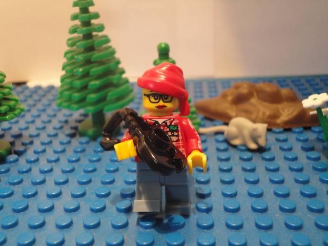 LEGO Arachnologist
