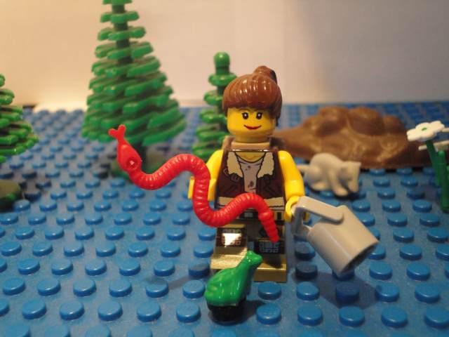 LEGO Herpetologist